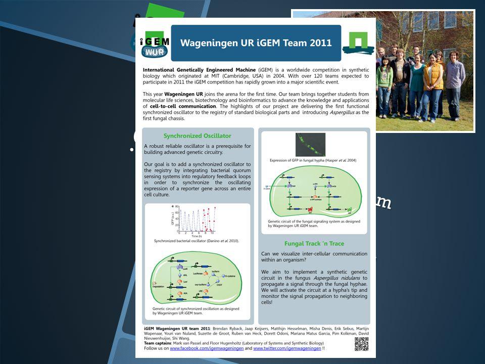 Wageningen UR team 2 projecten Bacterie en schimmel iGEM