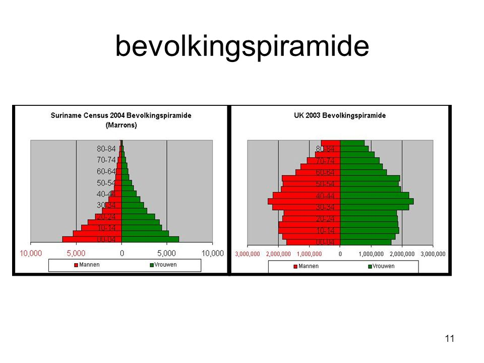 bevolkingspiramide