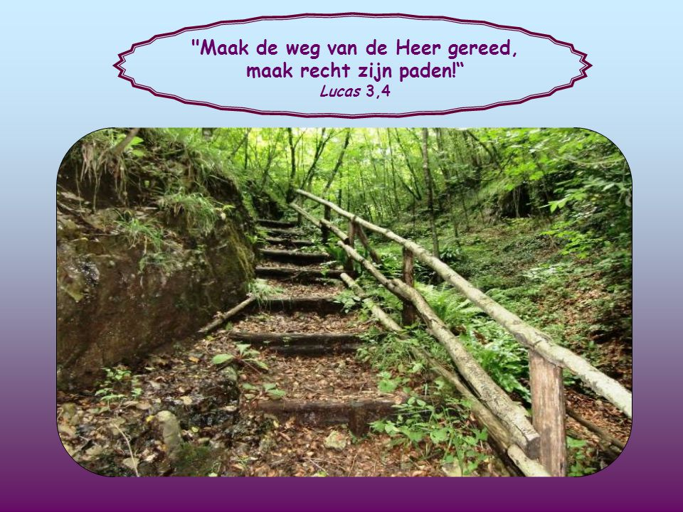 Maak de weg van de Heer gereed, maak recht zijn paden!
