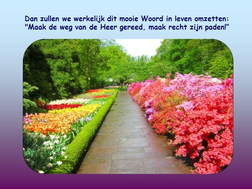 Dan zullen we werkelijk dit mooie Woord in leven omzetten: Maak de weg van de Heer gereed, maak recht zijn paden!