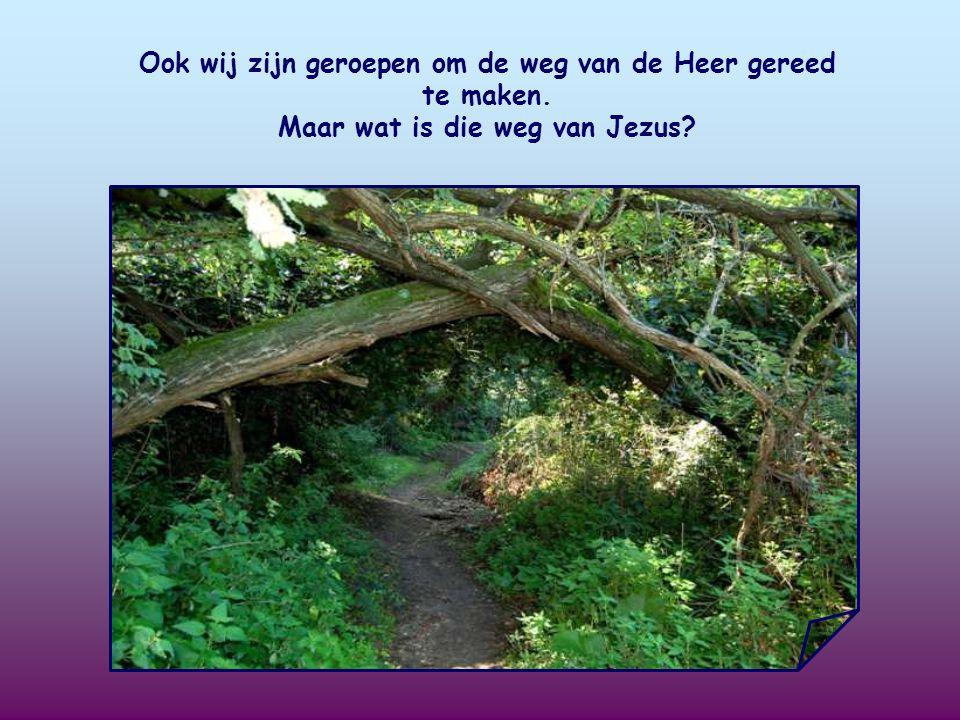Ook wij zijn geroepen om de weg van de Heer gereed te maken.