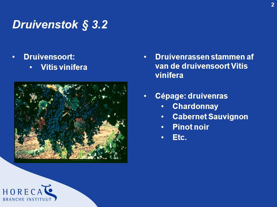 Druivenstok § 3.2 Druivensoort: Vitis vinifera