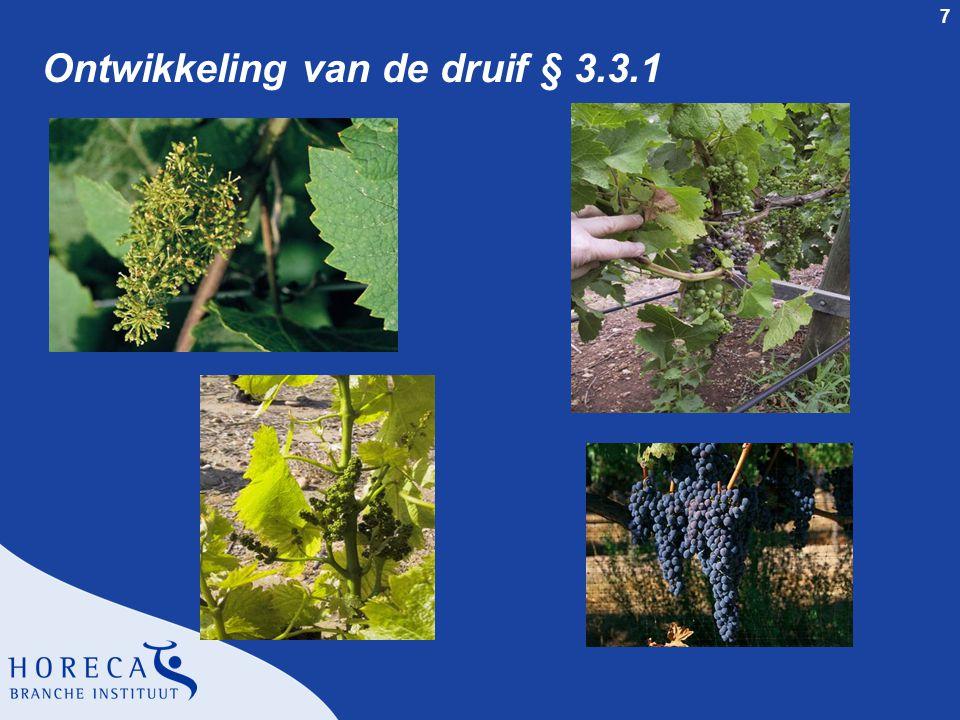 Ontwikkeling van de druif § 3.3.1