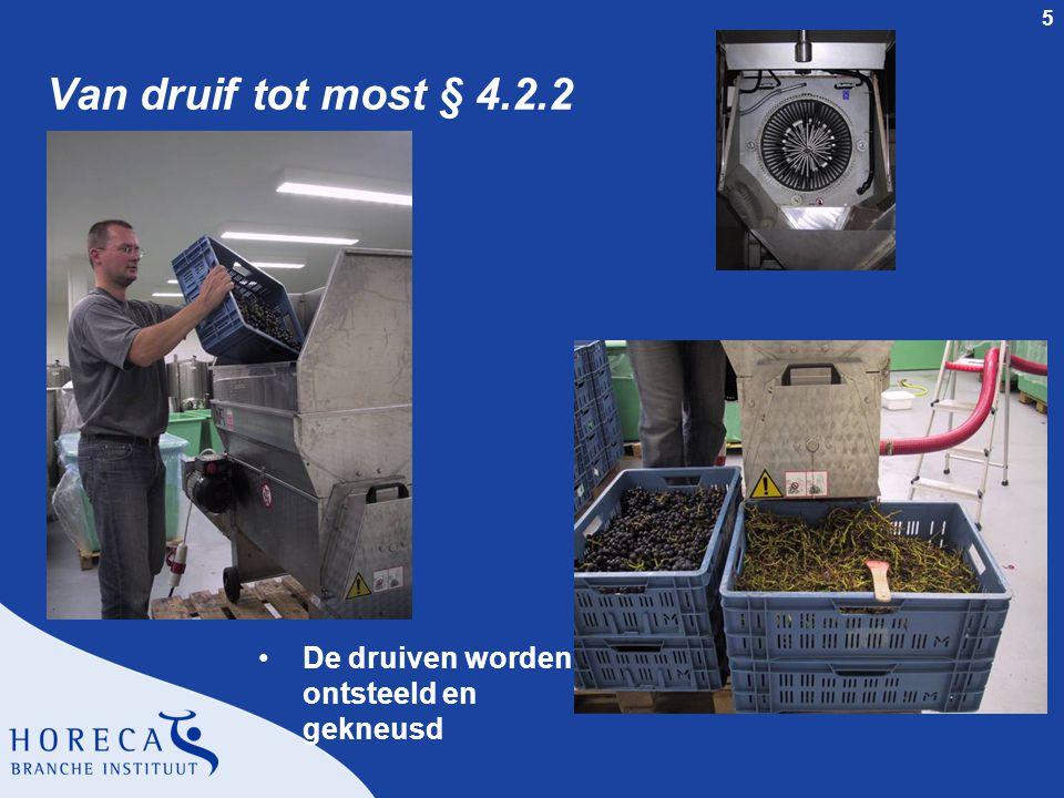 Van druif tot most § 4.2.2 De druiven worden ontsteeld en gekneusd