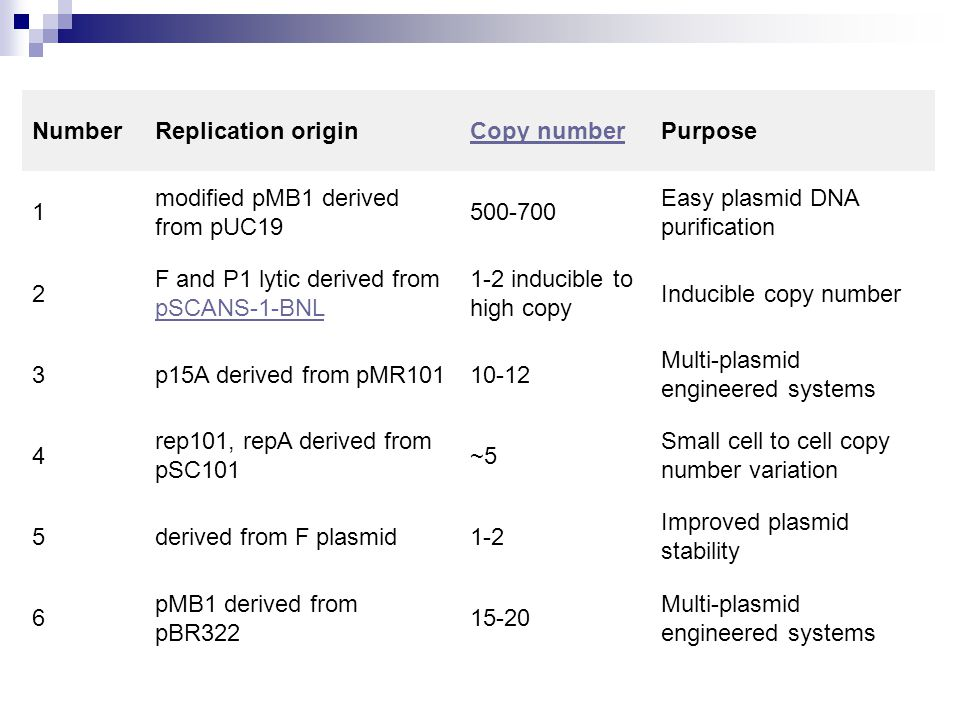 Number Replication origin. Copy number. Purpose. 1. modified pMB1 derived from pUC19. 500-700.