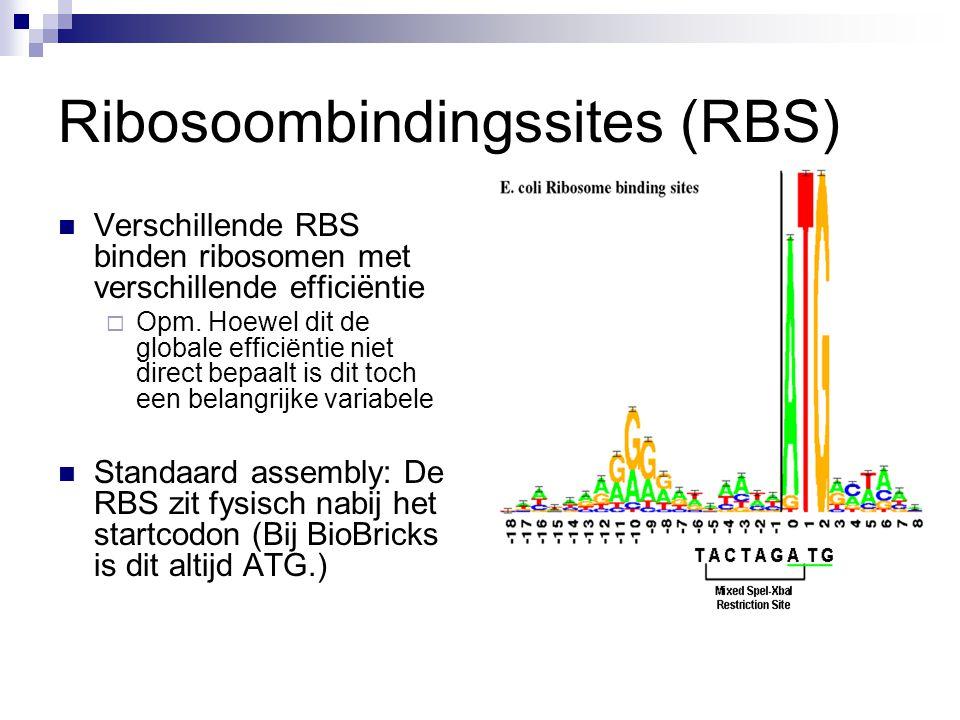 Ribosoombindingssites (RBS)