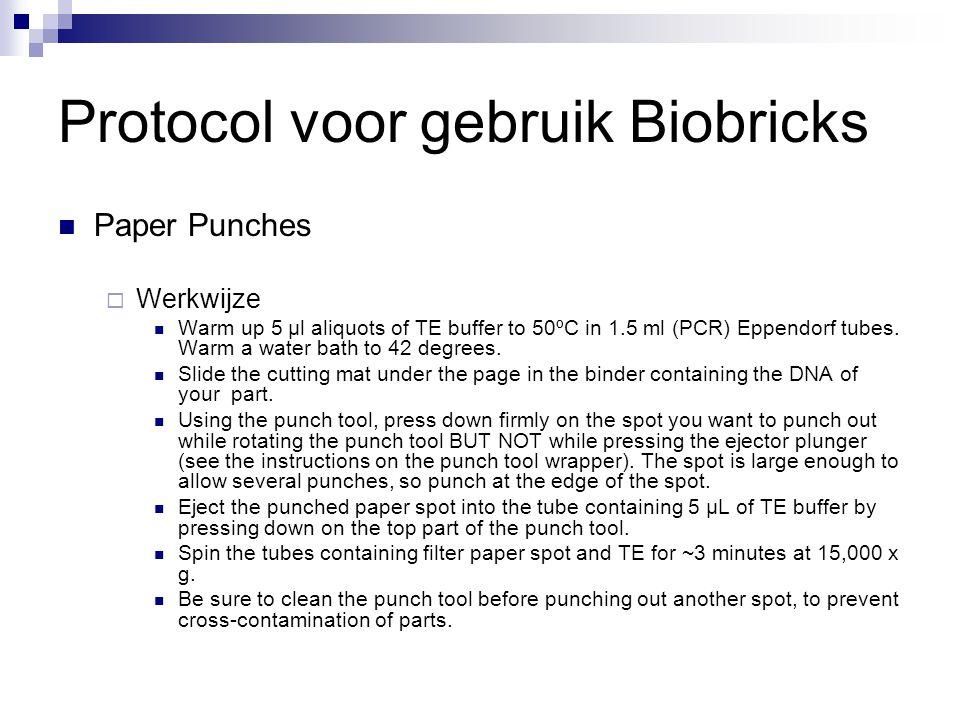 Protocol voor gebruik Biobricks
