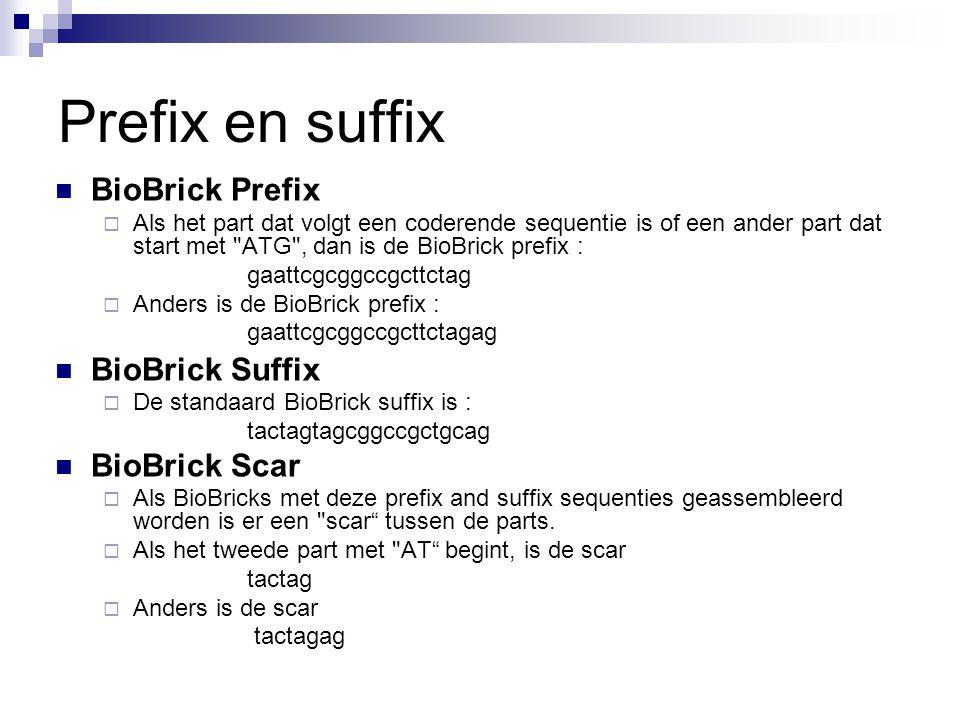 Prefix en suffix BioBrick Prefix BioBrick Suffix BioBrick Scar
