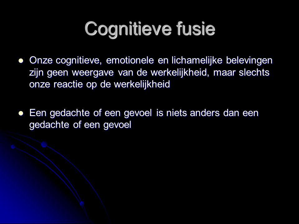 Cognitieve fusie