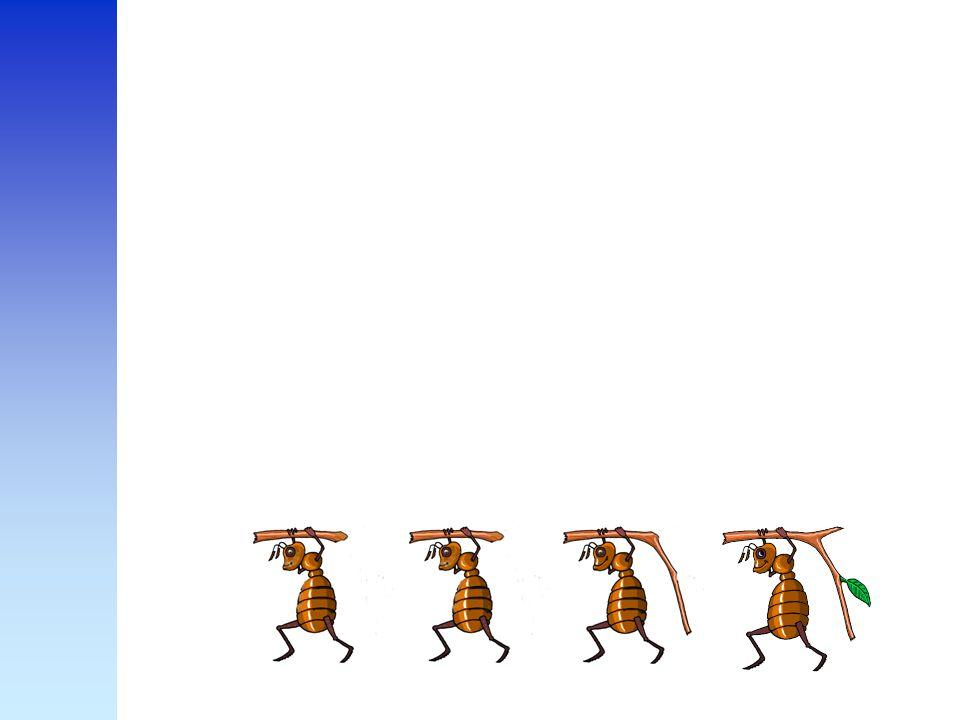 Om dit duidelijk te maken vertel ik het verhaal van de vier mieren en de leeuw.