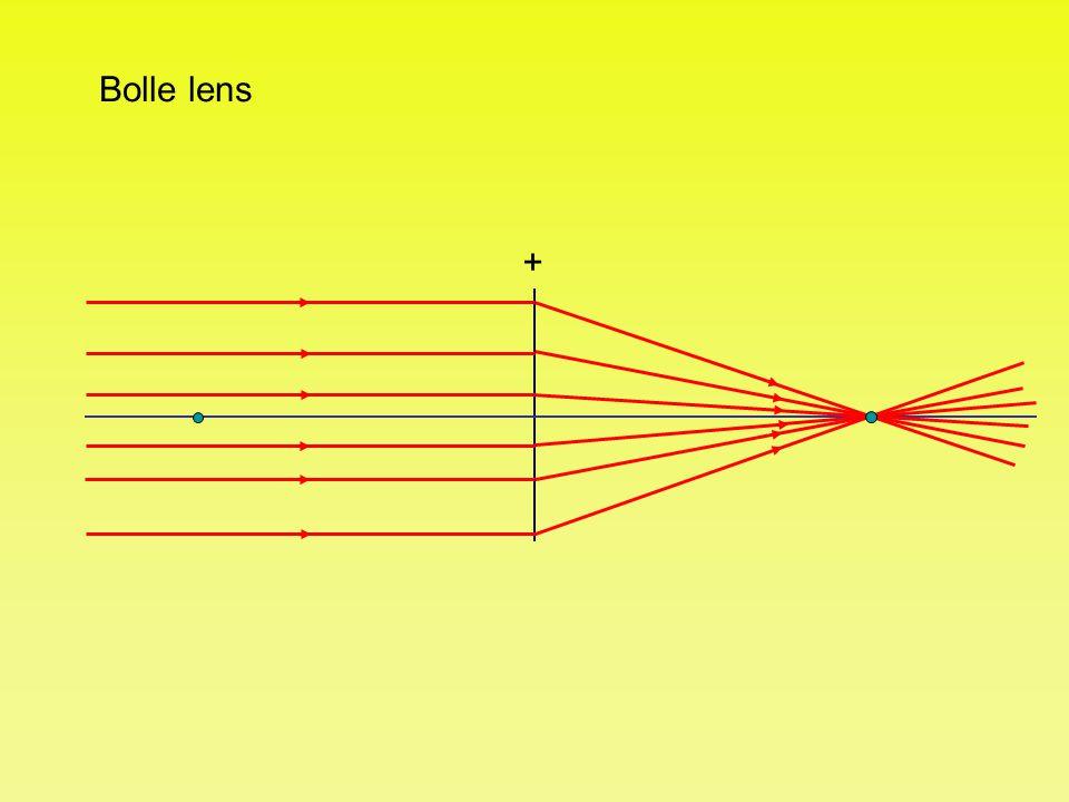 Bolle lens +