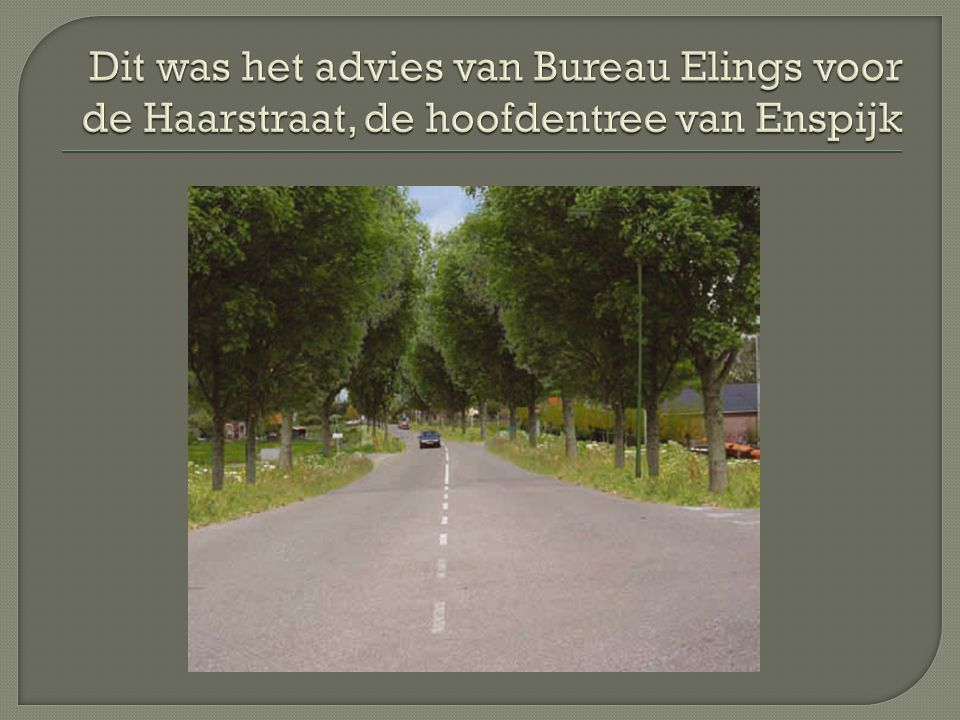 Dit was het advies van Bureau Elings voor de Haarstraat, de hoofdentree van Enspijk