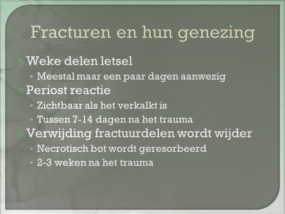Fracturen en hun genezing