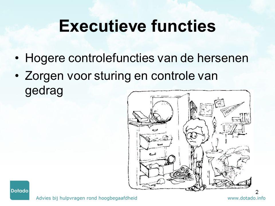 Executieve functies Hogere controlefuncties van de hersenen