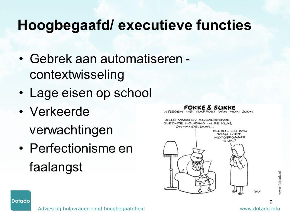Hoogbegaafd/ executieve functies