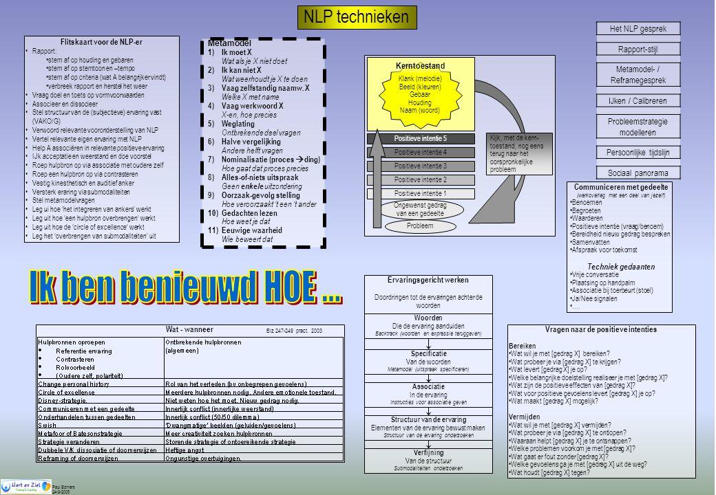 Flitskaart voor de NLP-er Communiceren met gedeelte