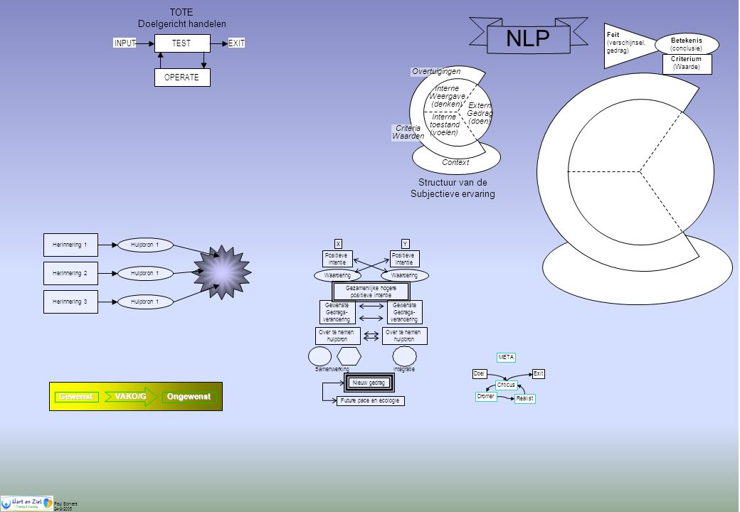 NLP TOTE Doelgericht handelen Structuur van de Subjectieve ervaring