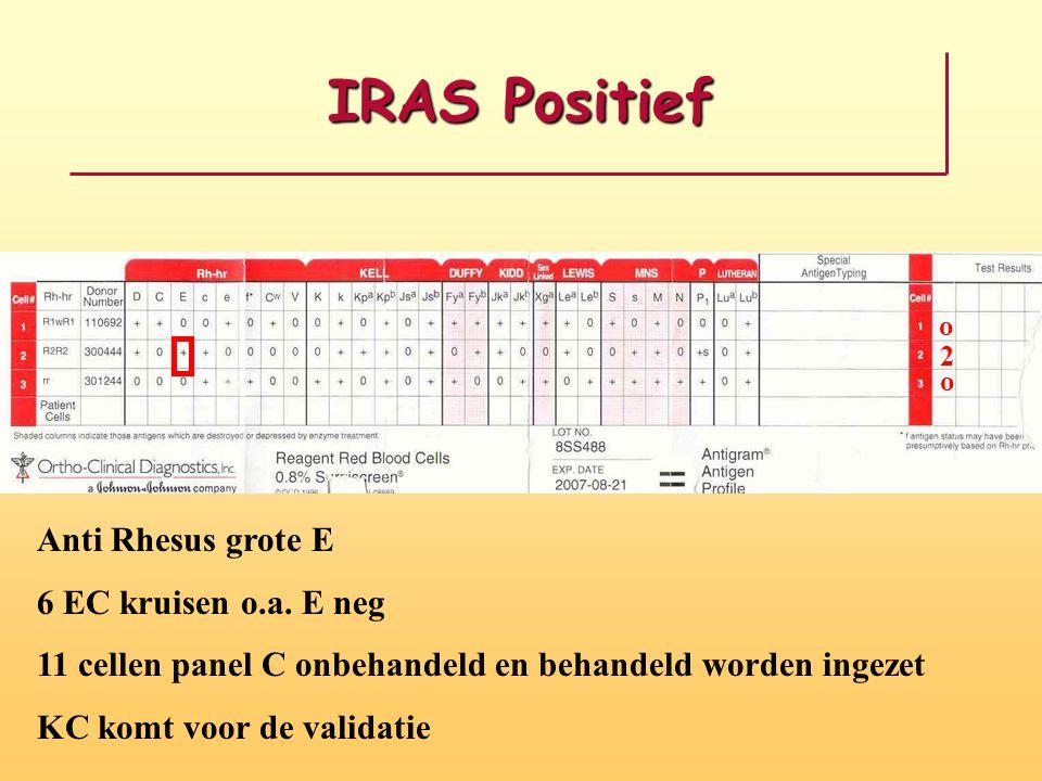 IRAS Positief Anti Rhesus grote E 6 EC kruisen o.a. E neg