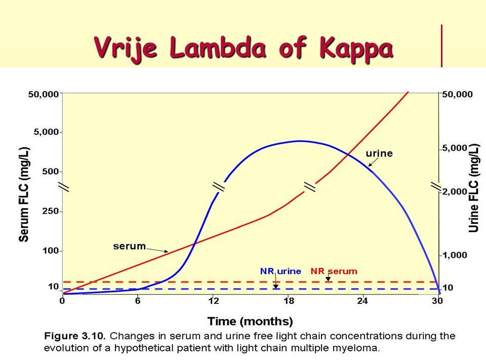 Vrije Lambda of Kappa
