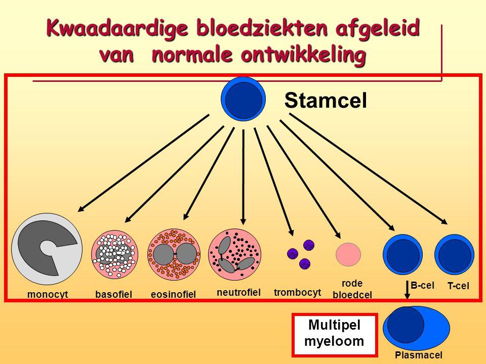 Kwaadaardige bloedziekten afgeleid van normale ontwikkeling
