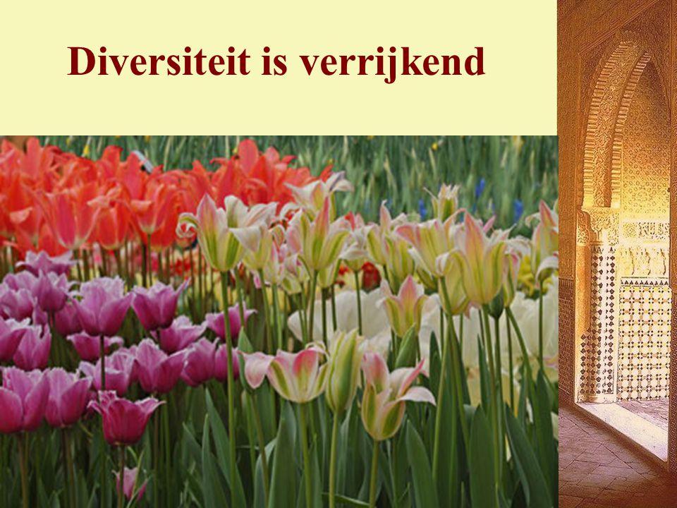 Diversiteit is verrijkend