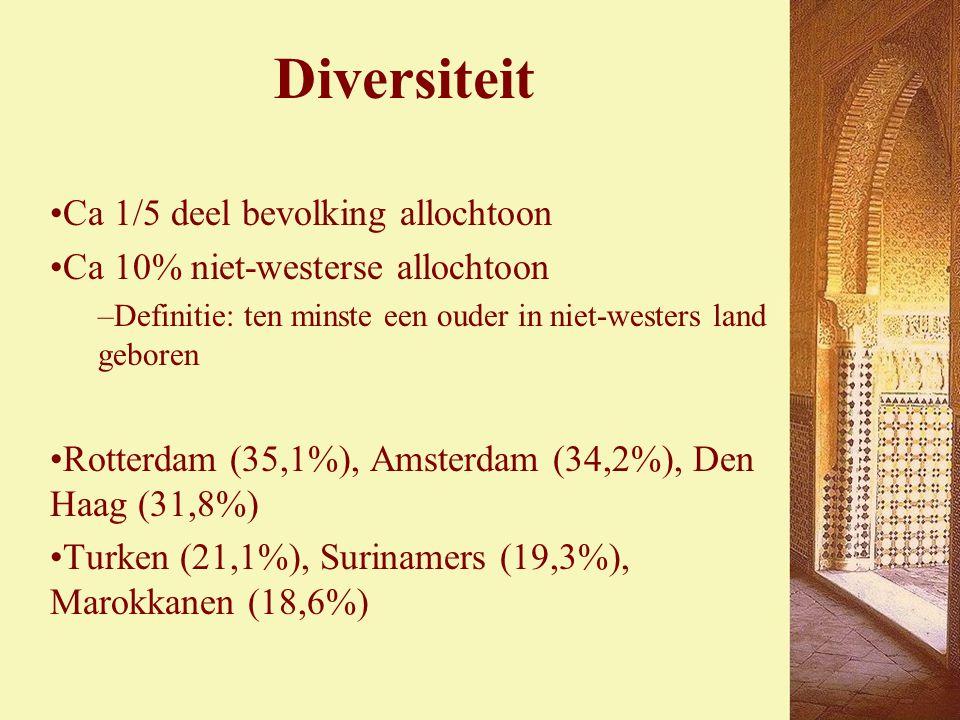Diversiteit Ca 1/5 deel bevolking allochtoon