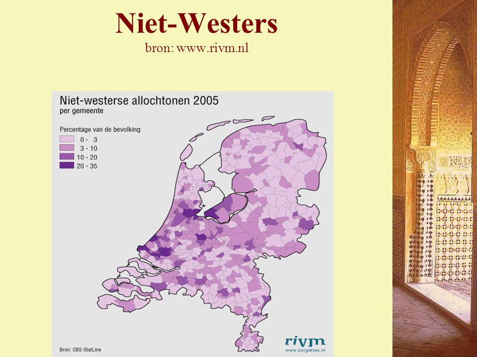 Niet-Westers bron: www.rivm.nl