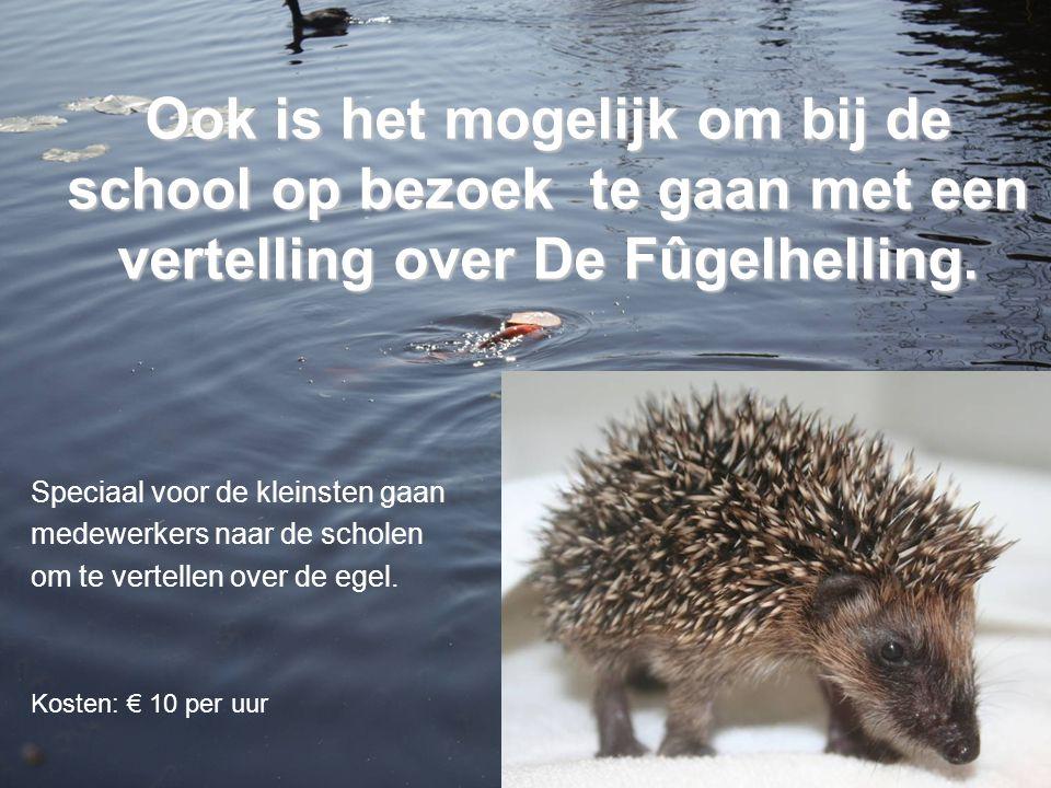 Ook is het mogelijk om bij de school op bezoek te gaan met een vertelling over De Fûgelhelling.