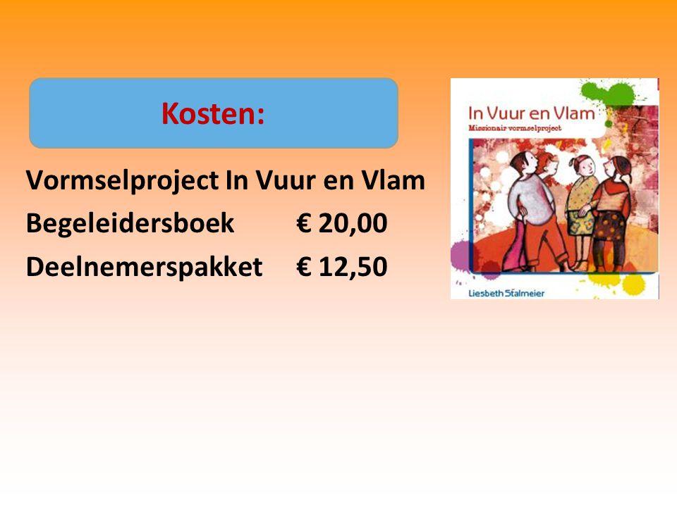 Kosten: Vormselproject In Vuur en Vlam Begeleidersboek € 20,00