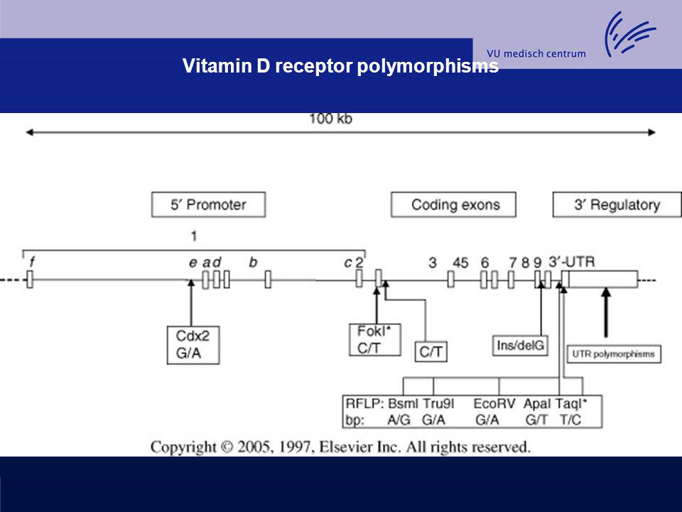 Vitamin D receptor polymorphisms