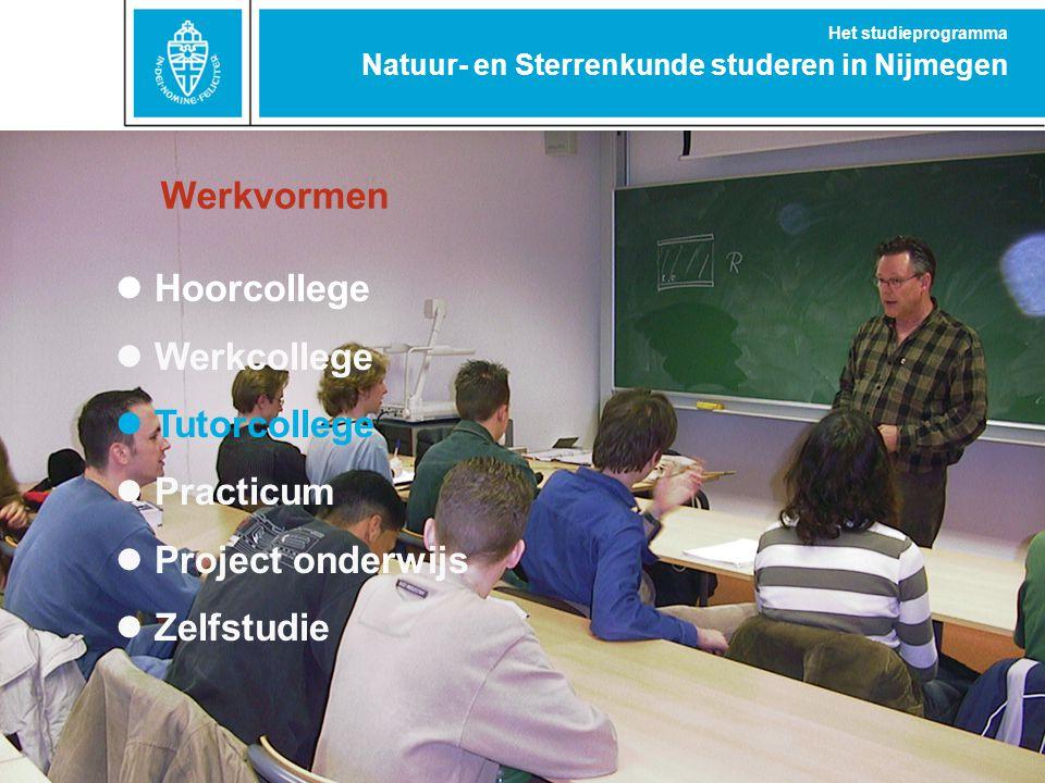 Werkvormen Hoorcollege Werkcollege Tutorcollege Practicum