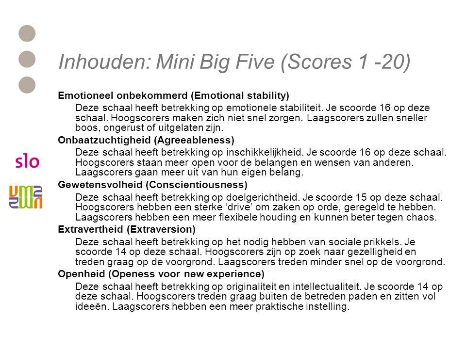 Inhouden: Mini Big Five (Scores 1 -20)