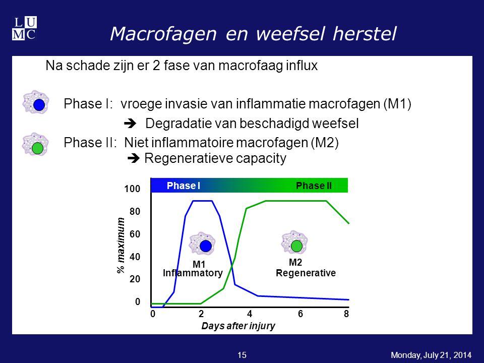 Macrofagen en weefsel herstel