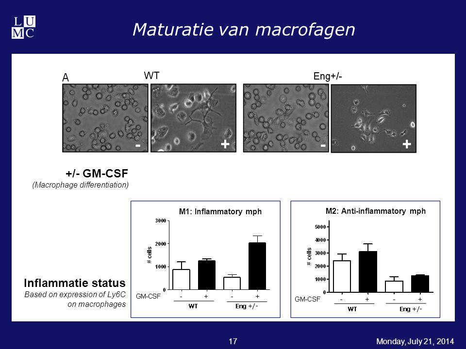 Maturatie van macrofagen