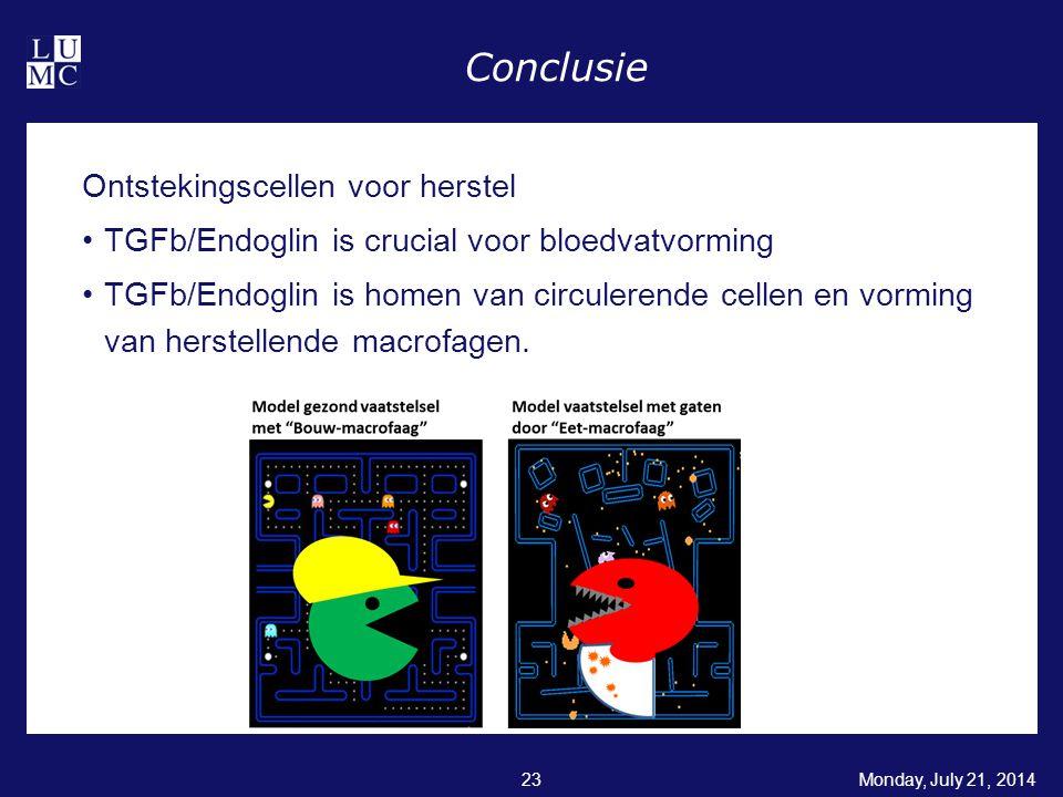 Conclusie Ontstekingscellen voor herstel