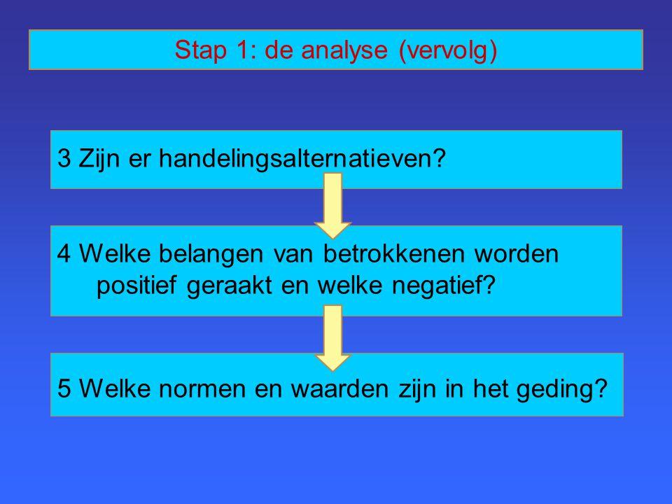 Stap 1: de analyse (vervolg)