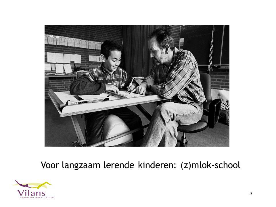 Voor langzaam lerende kinderen: (z)mlok-school
