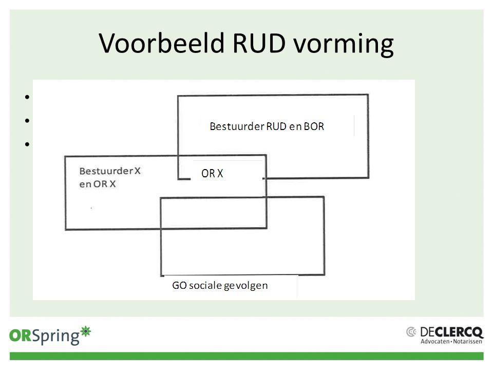 Voorbeeld RUD vorming Mogelijkheid voor tekst of opsomming.