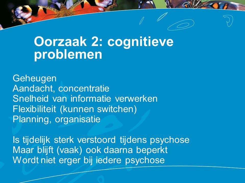 Oorzaak 2: cognitieve problemen