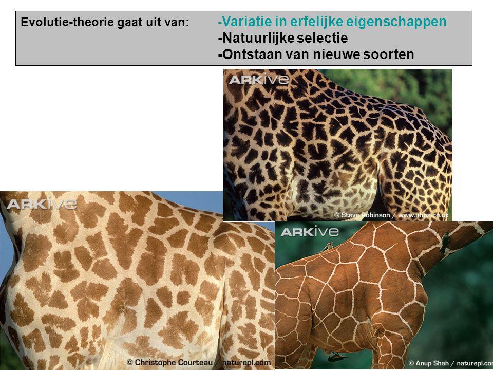 -Natuurlijke selectie -Ontstaan van nieuwe soorten