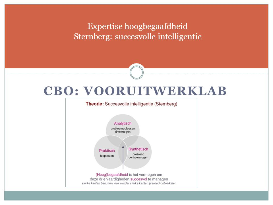 Expertise hoogbegaafdheid Sternberg: succesvolle intelligentie