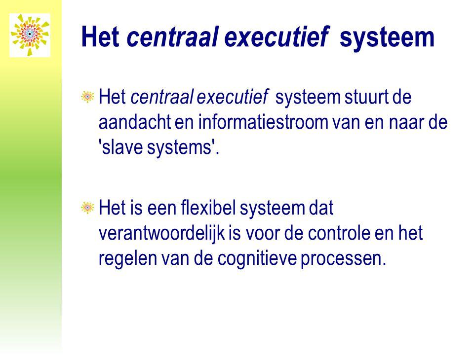 Het centraal executief systeem