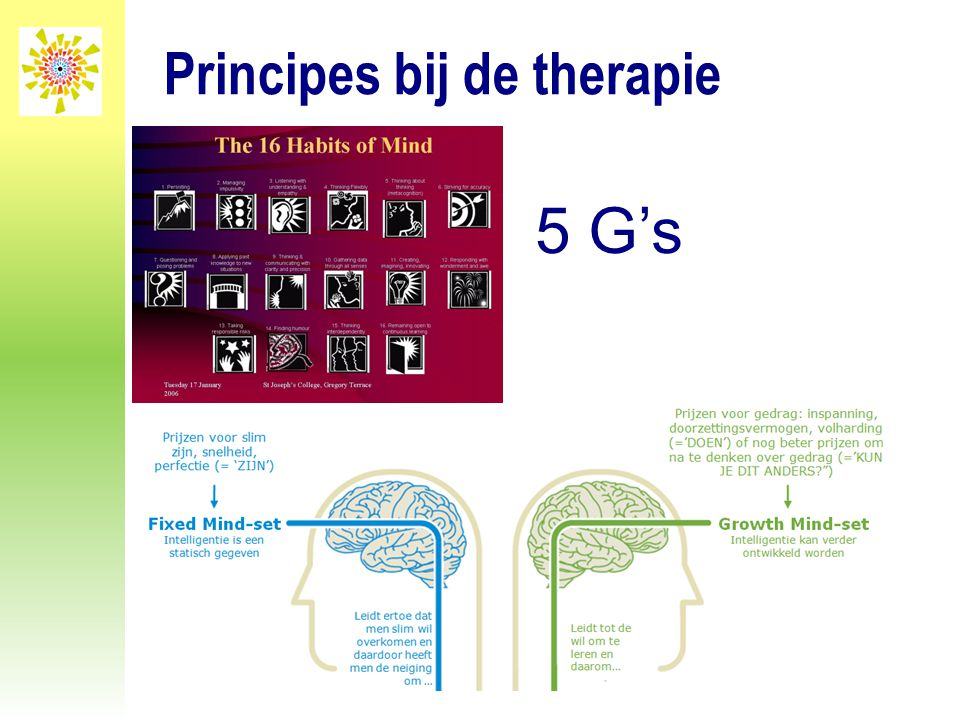 Principes bij de therapie