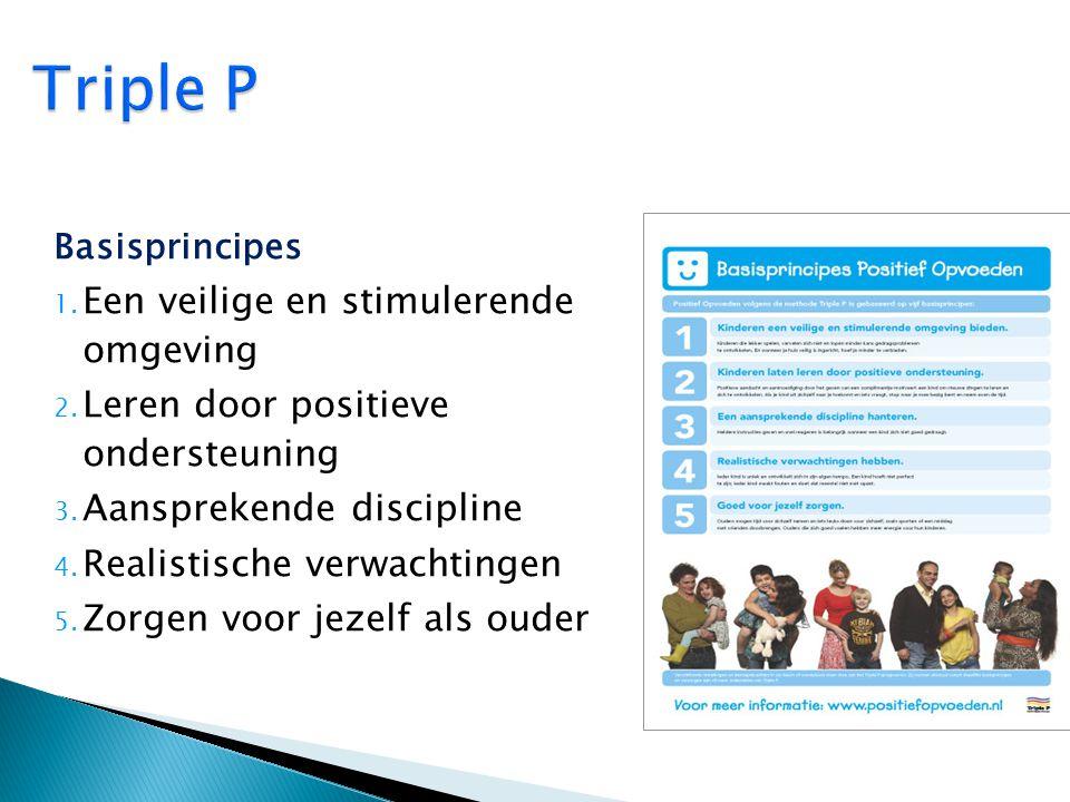 Triple P Een veilige en stimulerende omgeving