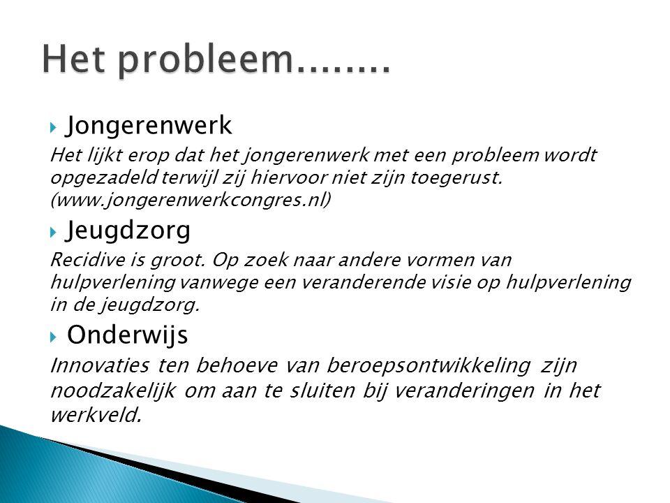 Het probleem........ Jongerenwerk Jeugdzorg Onderwijs