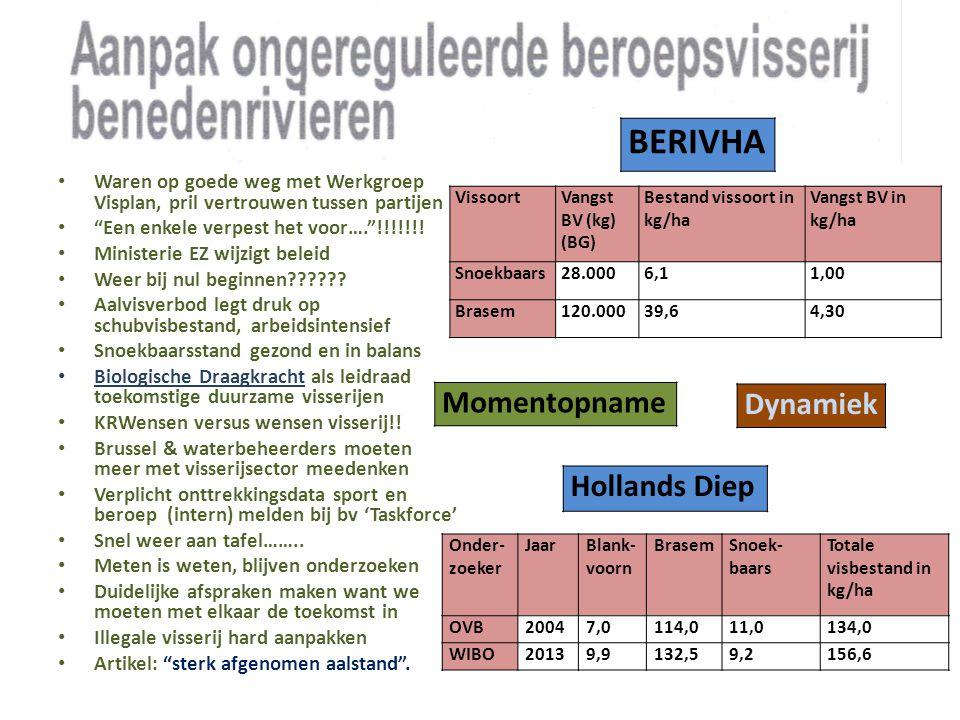 BERIVHA Momentopname Dynamiek Hollands Diep