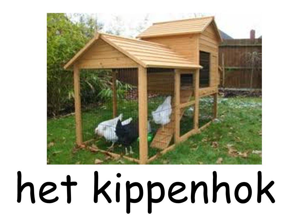 het kippenhok