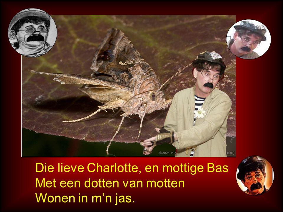 Die lieve Charlotte, en mottige Bas Met een dotten van motten Wonen in m'n jas.