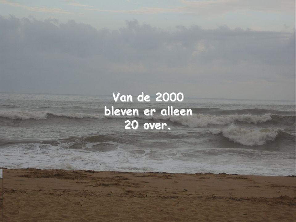 Van de 2000 bleven er alleen 20 over.