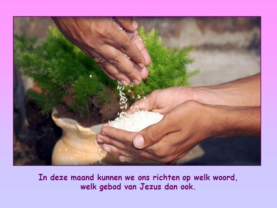 In deze maand kunnen we ons richten op welk woord, welk gebod van Jezus dan ook.